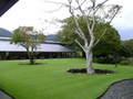 レストランと美術館の間の庭